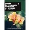 D. G. Hessayon Expert in cultivarea plantelor de interior vol.II
